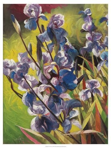 Jardin d'irisI Reproduction d'art
