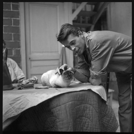 jacques brel cuddling his cat september 1959 reproduction photographique par marcel begoin sur. Black Bedroom Furniture Sets. Home Design Ideas