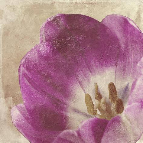 Buttercream Tulip 1 Reproduction procédé giclée