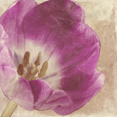 Buttercream Tulip 1I Reproduction procédé giclée