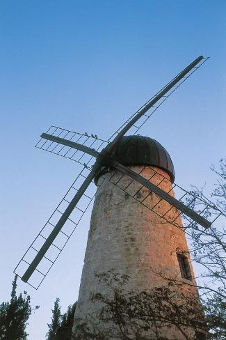 Montefiore Windmill Reproduction photographique