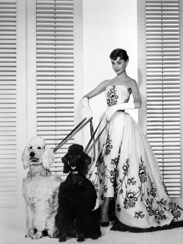 Audrey Hepburn Walking Dogs Sabrina Photographie