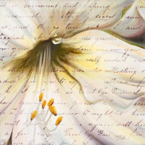 Lily Script II Reproduction giclée Premium