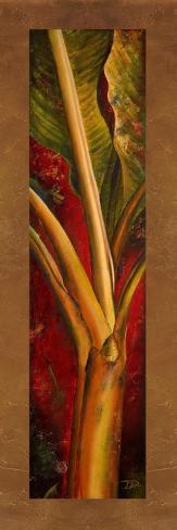 Plantain rouge Reproduction giclée Premium