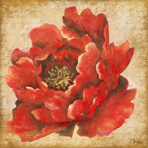 Red Peony on Gold Reproduction giclée Premium