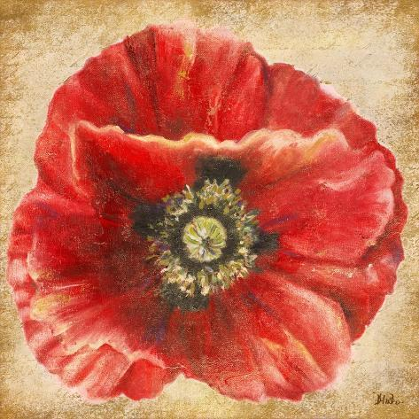 Red Poppy on Gold Reproduction giclée Premium