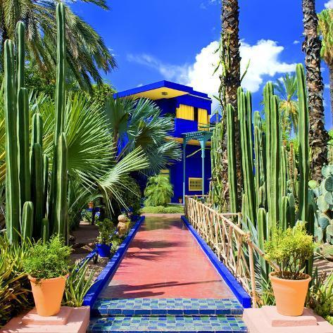 Vue des cactus dans le jardin majorelle marrakech au maroc reproduction photographique par - Par vue de jardin ...