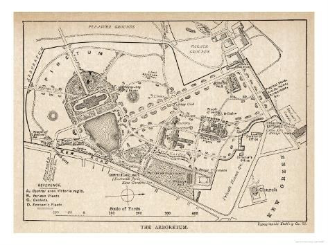Plan of the Botanical Gardens Reproduction procédé giclée