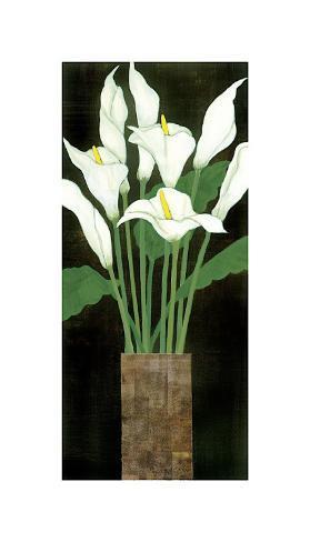 Ivory Calla Lilies Reproduction procédé giclée