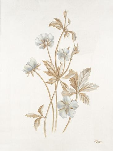 French Botanicals III Reproduction procédé giclée