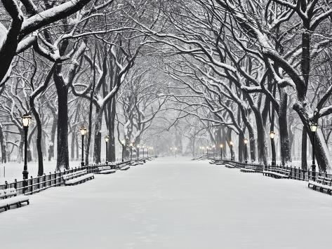 Central Park en hiver, New York Reproduction photographique