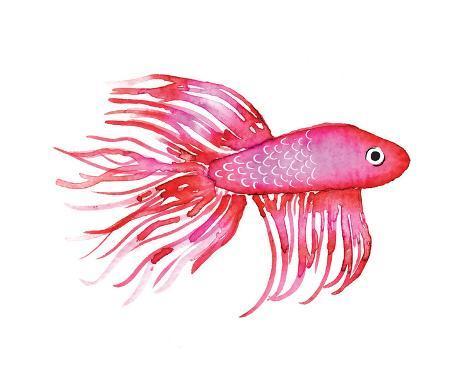 Deep Sea Pink Fish Reproduction d'art
