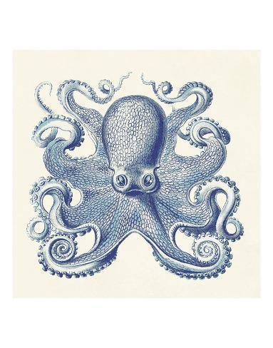 Octopus I Reproduction d'art