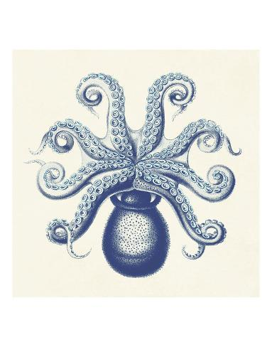 Octopus II Reproduction d'art