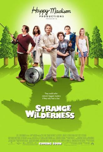 Strange Wilderness Affiche double face
