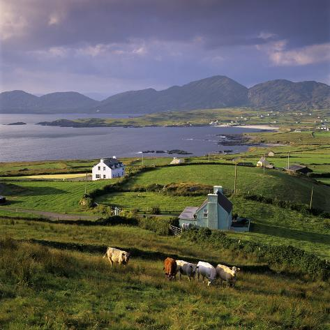 View over Allihies and Ballydonegan Bay, Beara Peninsula, County Cork, Munster, Republic of Ireland Reproduction photographique