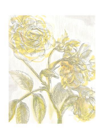 Belle Fleur Yellow I Crop Reproduction giclée Premium
