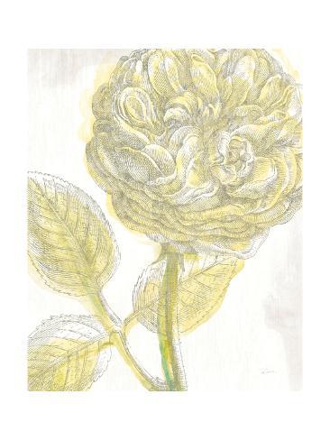 Belle Fleur Yellow III Crop Reproduction giclée Premium