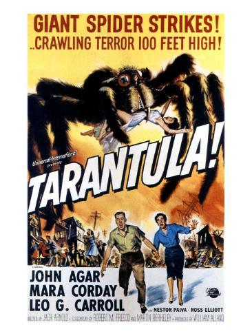 Tarantula, John Agar, Mara Corday, 1955 Photographie