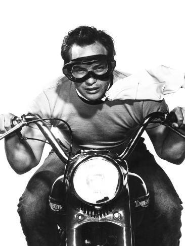 The Wild One, Marlon Brando, 1953 Photographie