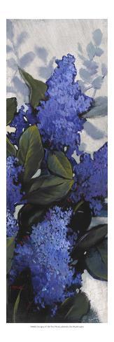 Lilac Spray II Reproduction d'art