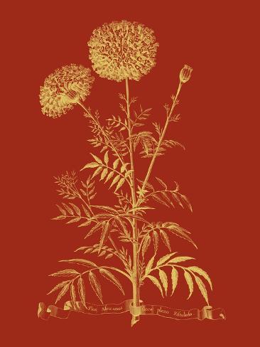Un Bouquet paprika  I Reproduction d'art