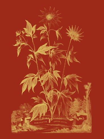 Un Bouquet paprika IV Reproduction d'art