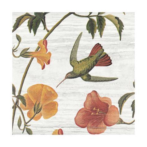 Vintage Hummingbird I Reproduction d'art