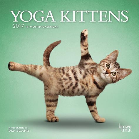 Yoga Kittens - 2017 Mini Calendar Calendriers