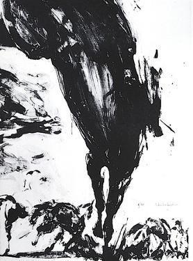 Chevaux en liberté by Ahmed Shahabuddin