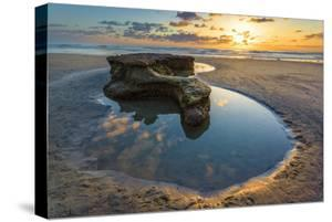 Rock Formations at Swamis Beach in Encinitas, Ca by Andrew Shoemaker