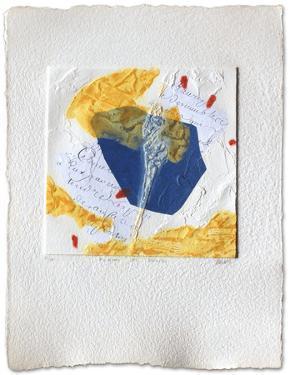 Pleins et Delies by Bernard Alligand
