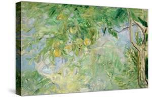 Orange Tree Branches, 1889 by Berthe Morisot