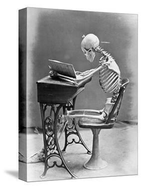Skeleton Reading at Desk by Bettmann