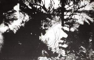 Paysage by Carole Benzaken