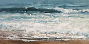 Shoreline study 01715 by Carole Malcolm