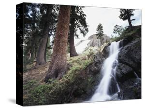 California, Sierra Nevada, Yosemite National Park, Waterfall from the Forest by Christopher Talbot Frank