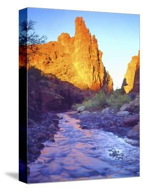 Stream Near Fisher Towers, Utah, USA by Christopher Talbot Frank