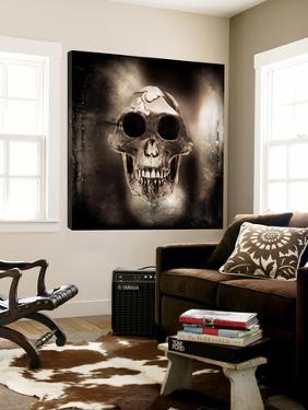 Prehistoric Skull by Clive Nolan