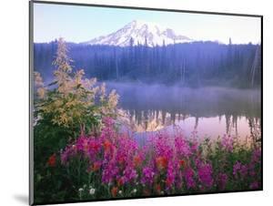 Wildflowers in Bloom by Lake on Mount Rainier by Craig Tuttle