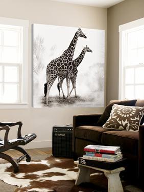 Giraffe II by Debra Van Swearingen