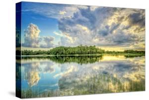 Everglades Sunset by Dennis Goodman