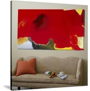 Red Coquelicot by Diane Lambin