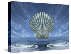 Shell Floating Above Ocean Tide with Blue Sky by Diane Miller