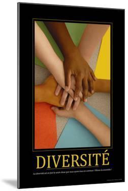 Diversité (French Translation)