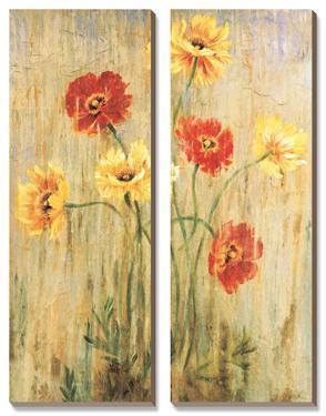 Poppy Serenade by Elizabeth Jardine