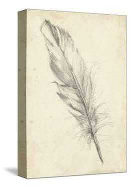 Feather Sketch III by Ethan Harper