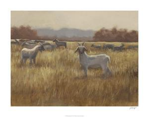 Grazing Goats I by Ethan Harper