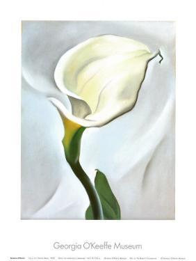 Calla Lily Turned Away, 1923 by Georgia O'Keeffe