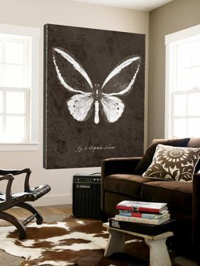 Butterfly I by GI ArtLab